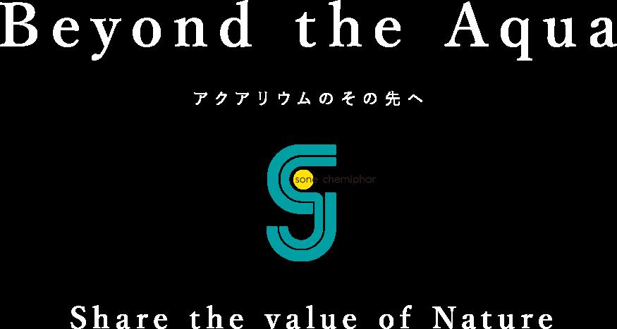 Beyond the Aqua